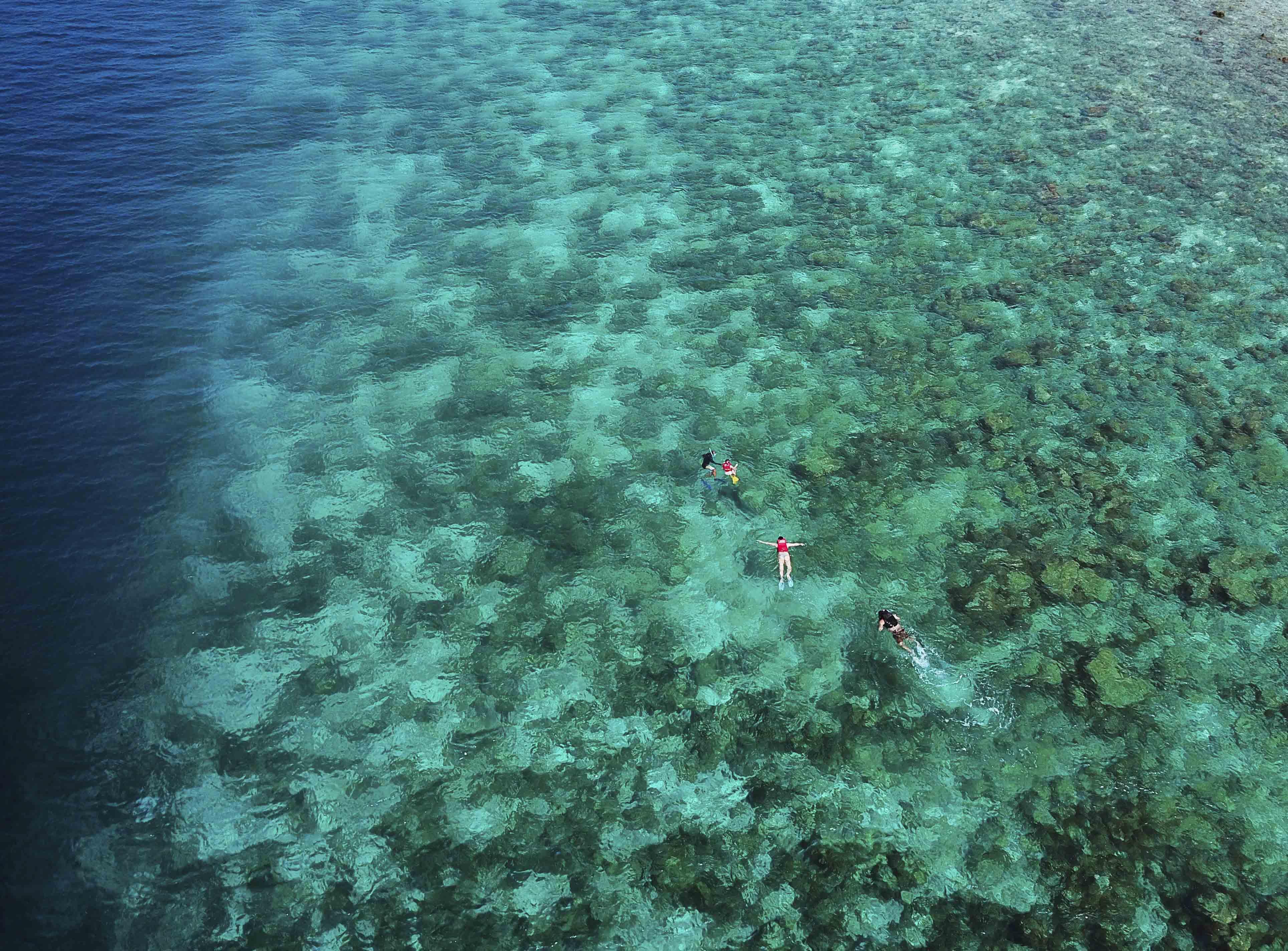 snorkeling in maldives fulidhoo